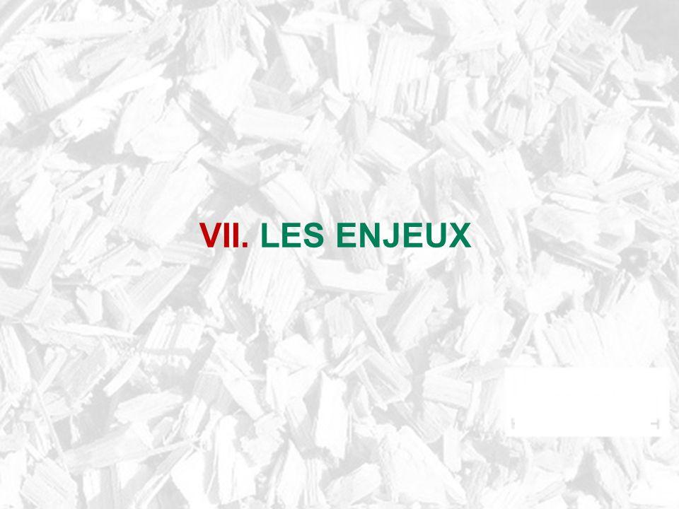 VII. LES ENJEUX