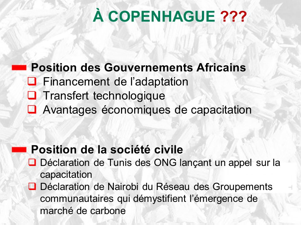 À COPENHAGUE Position des Gouvernements Africains