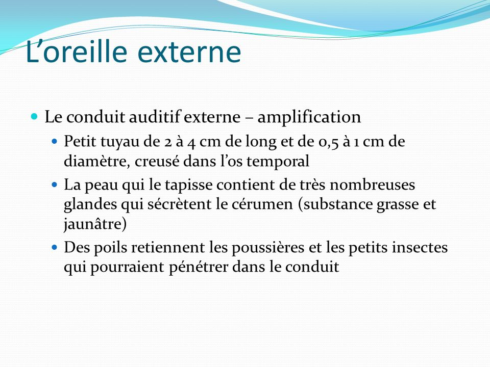L'oreille externe Le conduit auditif externe – amplification