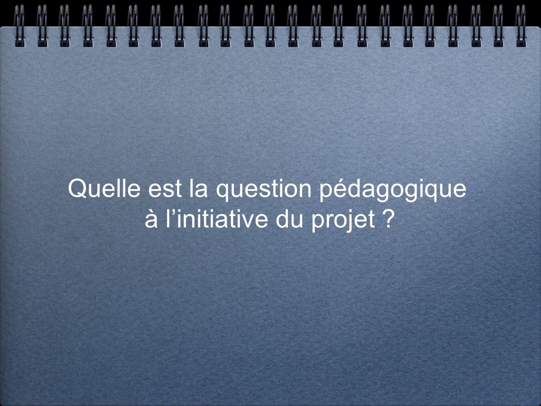 Quelle est la question pédagogique à l'initiative du projet