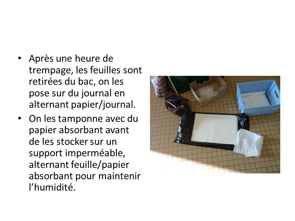 Après une heure de trempage, les feuilles sont retirées du bac, on les pose sur du journal en alternant papier/journal.