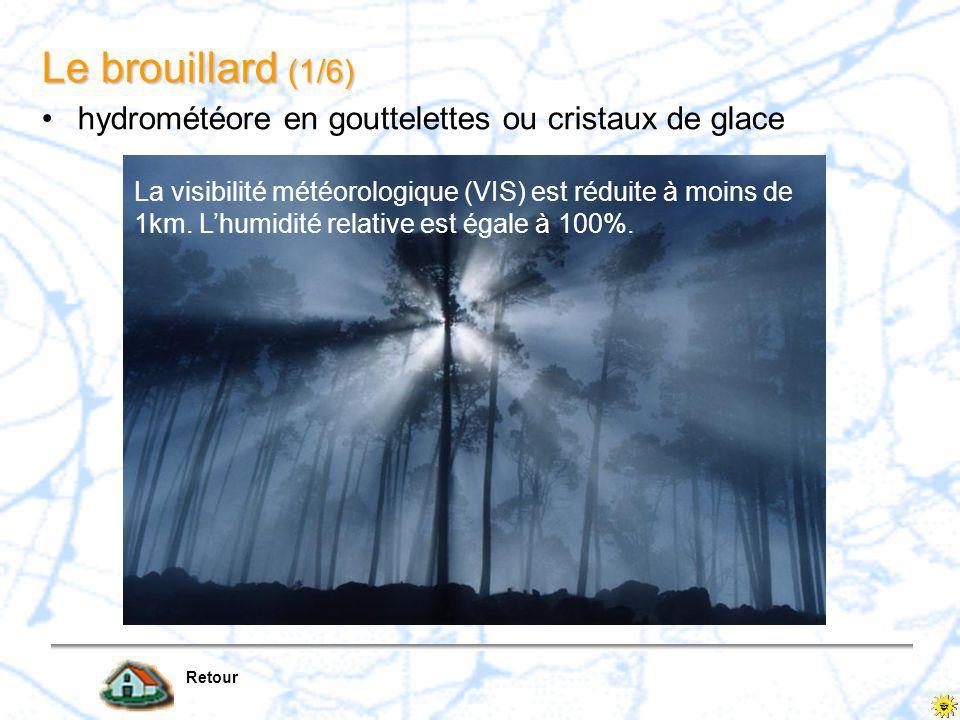 Le brouillard (1/6) hydrométéore en gouttelettes ou cristaux de glace