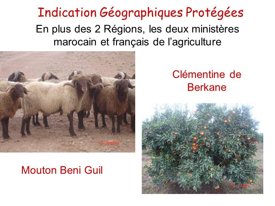 Indication Géographiques Protégées