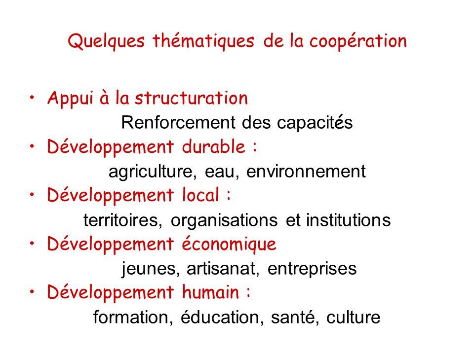 Quelques thématiques de la coopération