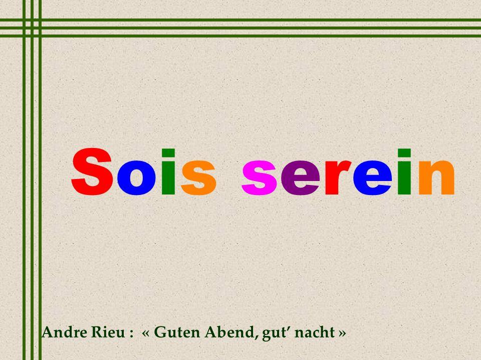 Sois serein Andre Rieu : « Guten Abend, gut' nacht »