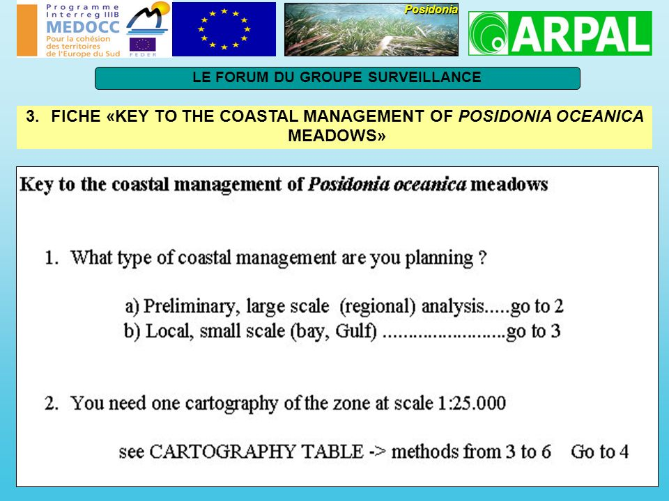 FICHE «KEY TO THE COASTAL MANAGEMENT OF POSIDONIA OCEANICA MEADOWS»