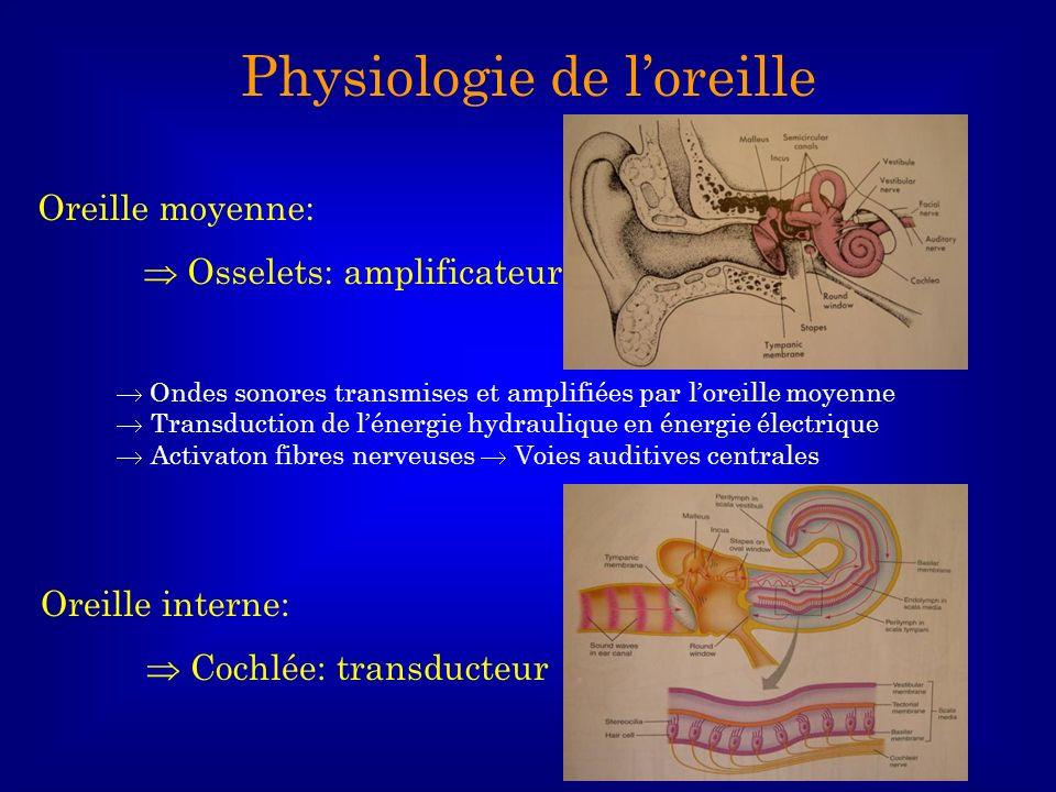 Physiologie de l'oreille