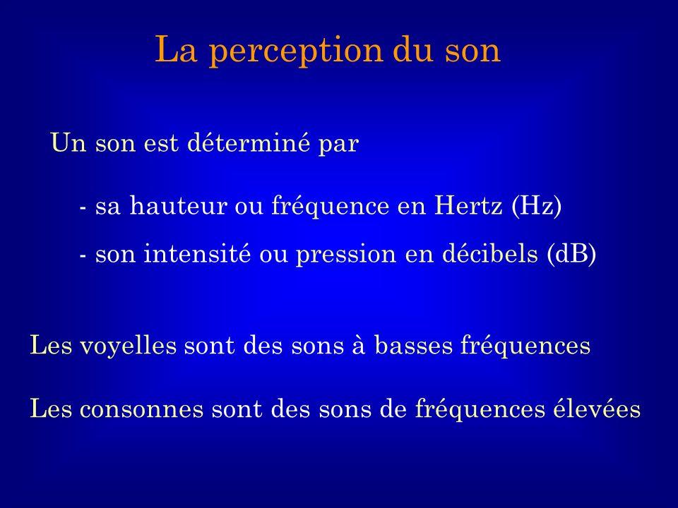 La perception du son Un son est déterminé par