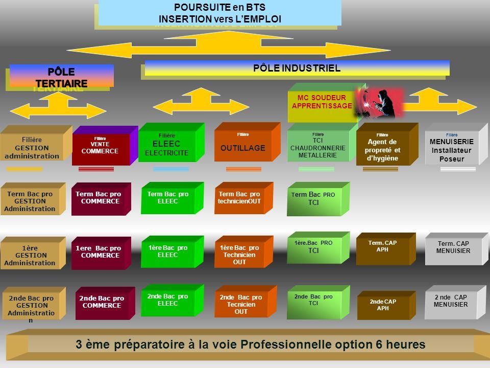 3 ème préparatoire à la voie Professionnelle option 6 heures