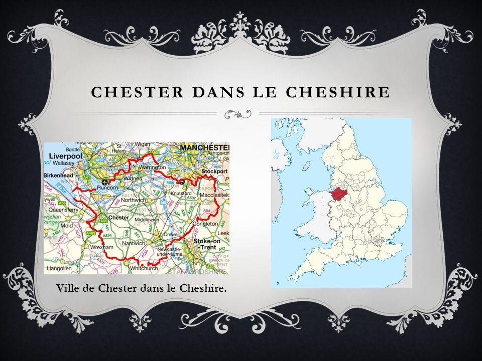 Chester dans le cheshire