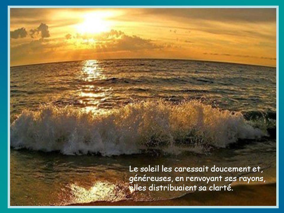 Le soleil les caressait doucement et, généreuses, en renvoyant ses rayons, elles distribuaient sa clarté.