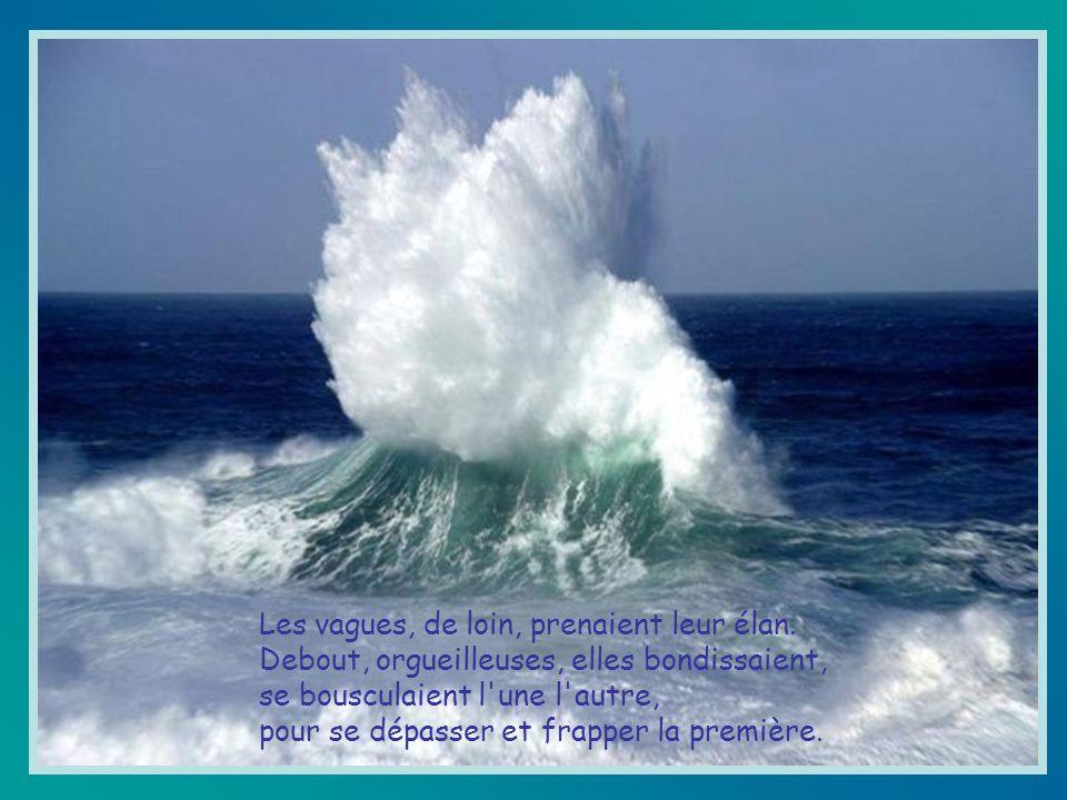Les vagues, de loin, prenaient leur élan