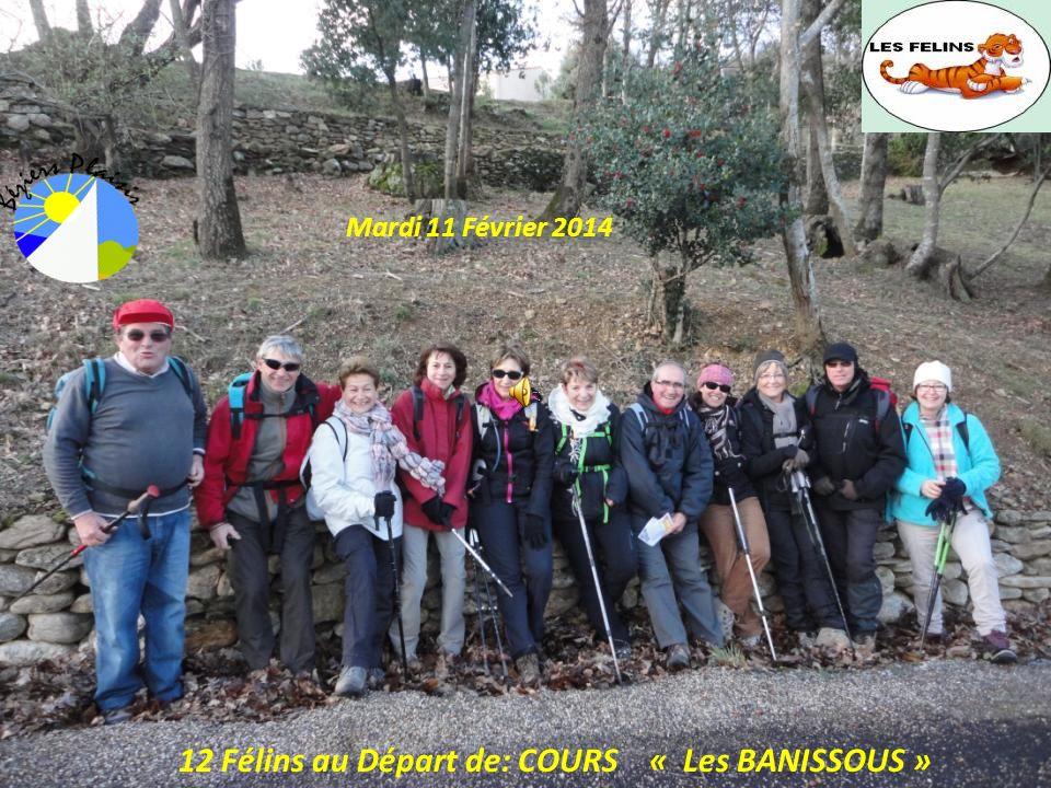 12 Félins au Départ de: COURS « Les BANISSOUS »