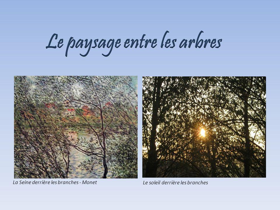 Le paysage entre les arbres