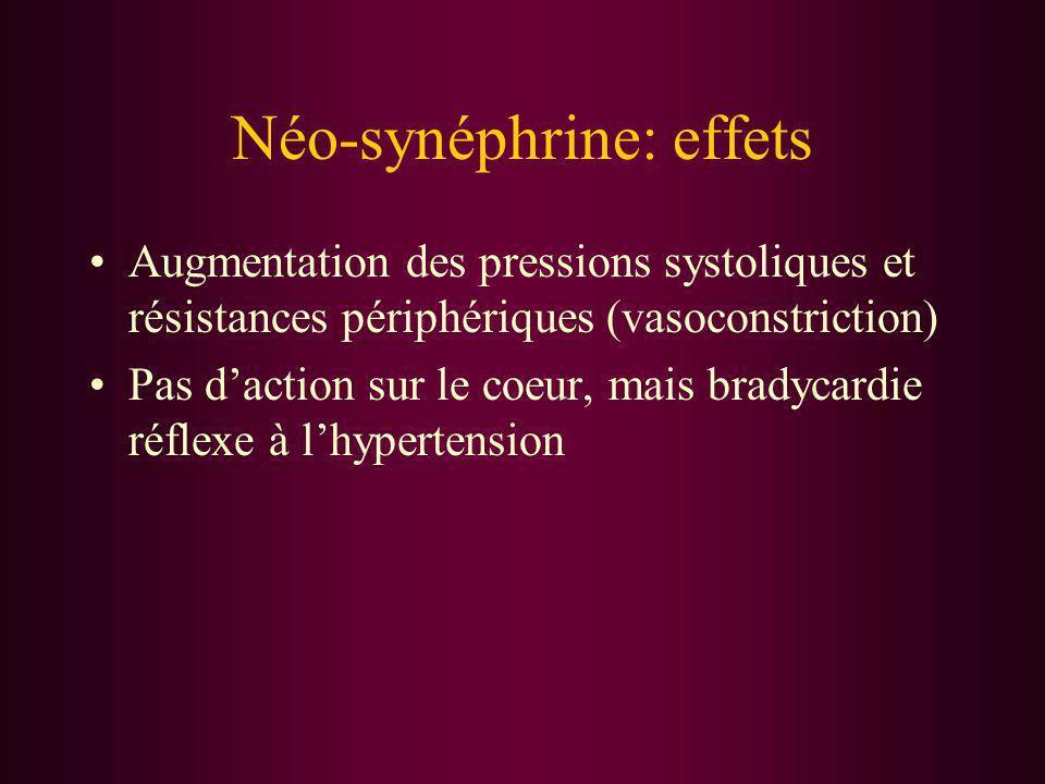 Néo-synéphrine: effets