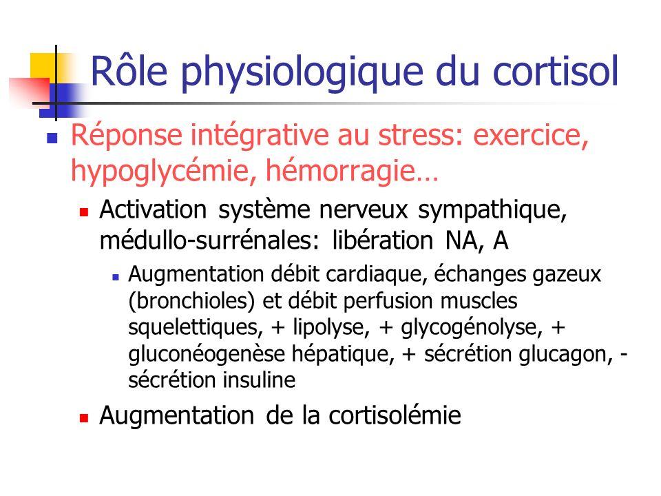 Rôle physiologique du cortisol