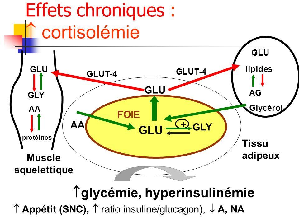 Effets chroniques :  cortisolémie glycémie, hyperinsulinémie GLU GLU