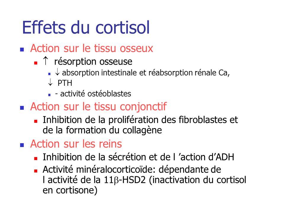 Effets du cortisol Action sur le tissu osseux