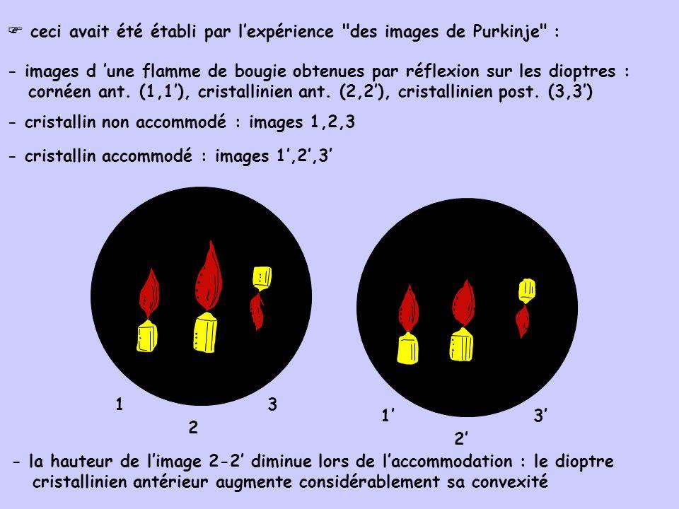  ceci avait été établi par l'expérience des images de Purkinje :
