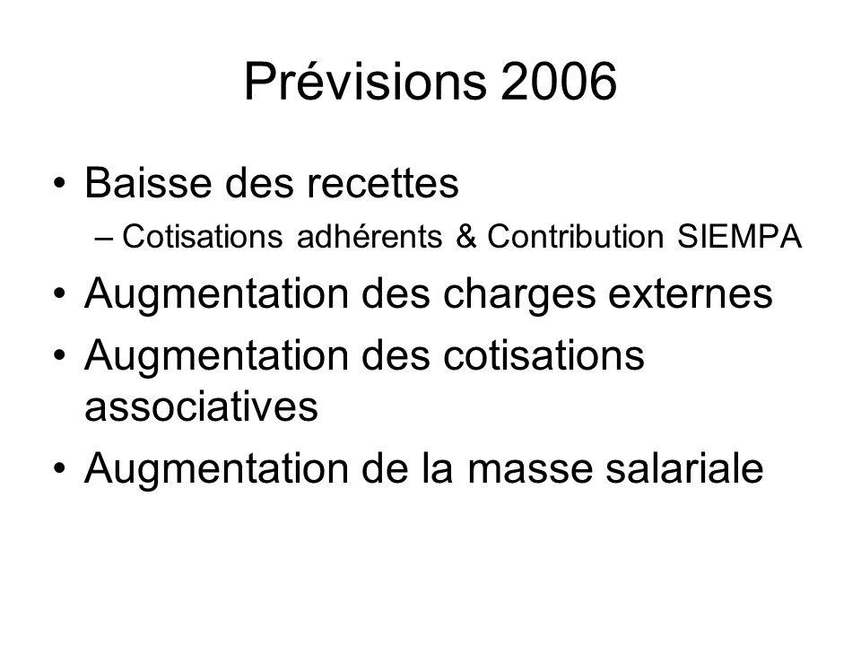 Prévisions 2006 Baisse des recettes Augmentation des charges externes