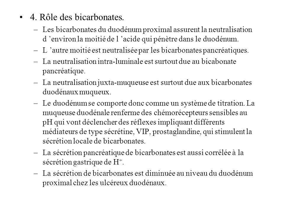 4. Rôle des bicarbonates.