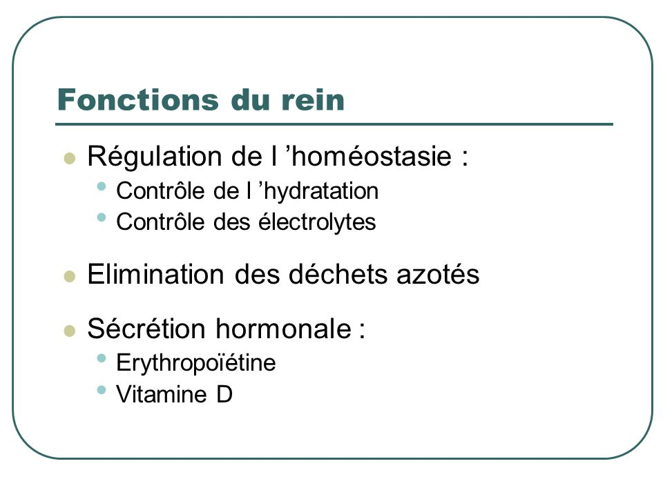 Fonctions du rein Régulation de l 'homéostasie :