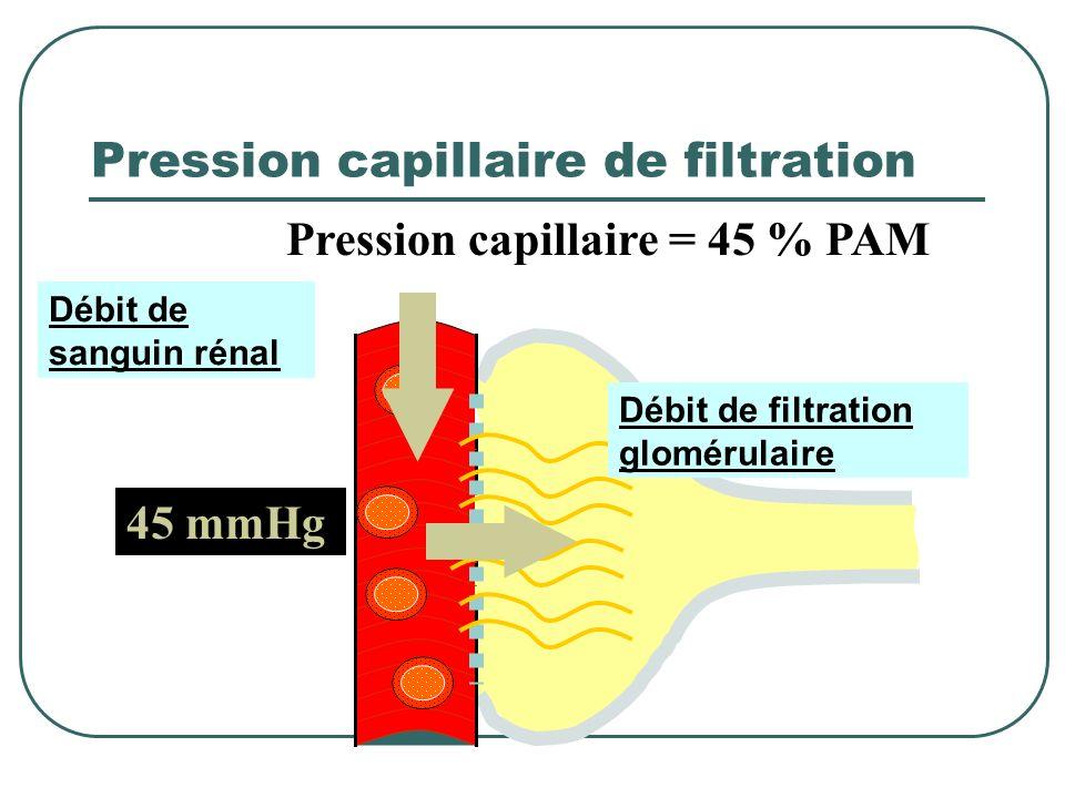 Pression capillaire de filtration