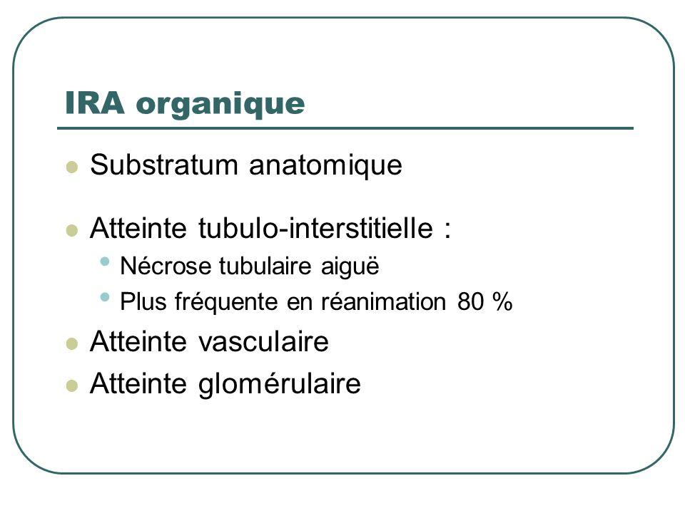 IRA organique Substratum anatomique Atteinte tubulo-interstitielle :