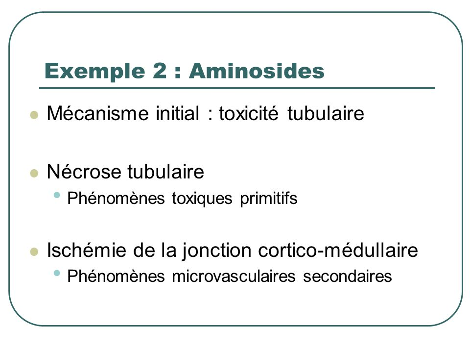 Exemple 2 : Aminosides Mécanisme initial : toxicité tubulaire