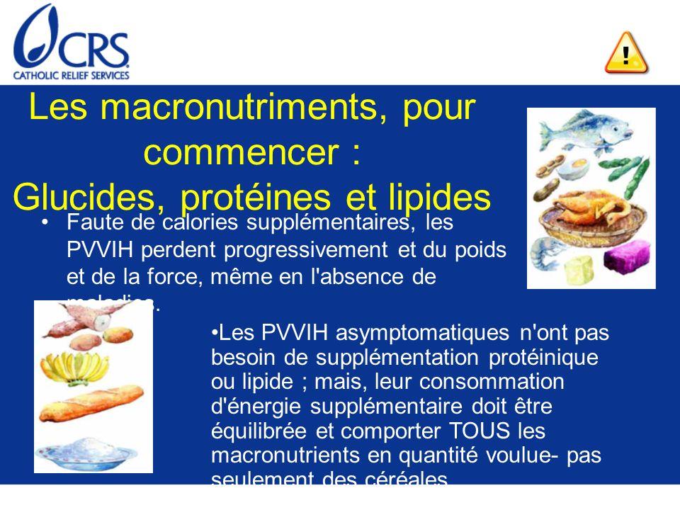 Les macronutriments, pour commencer : Glucides, protéines et lipides