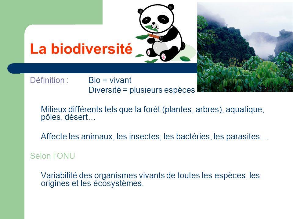 La biodiversité Définition : Bio = vivant