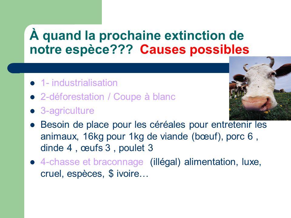 À quand la prochaine extinction de notre espèce Causes possibles