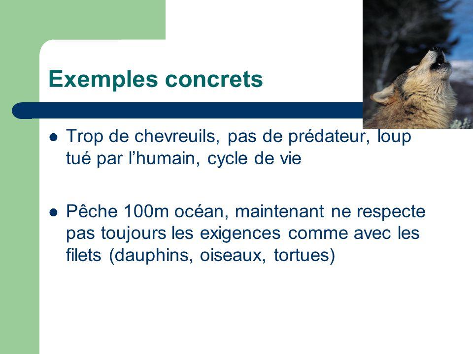 Exemples concrets Trop de chevreuils, pas de prédateur, loup tué par l'humain, cycle de vie.