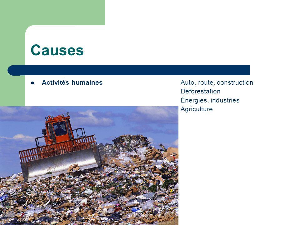 Causes Activités humaines Auto, route, construction Déforestation