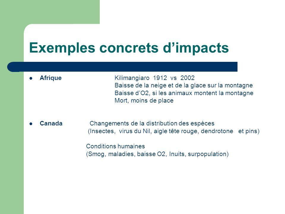 Exemples concrets d'impacts