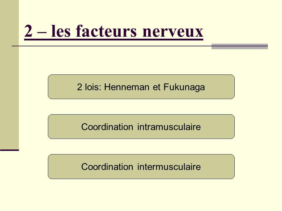 2 – les facteurs nerveux 2 lois: Henneman et Fukunaga