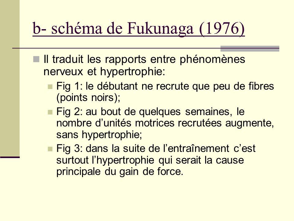 b- schéma de Fukunaga (1976)