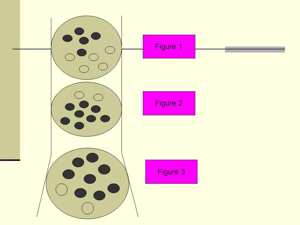 Figure 1 Figure 2 Figure 3