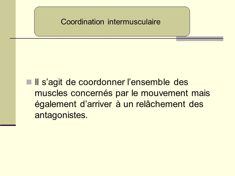 Coordination intermusculaire