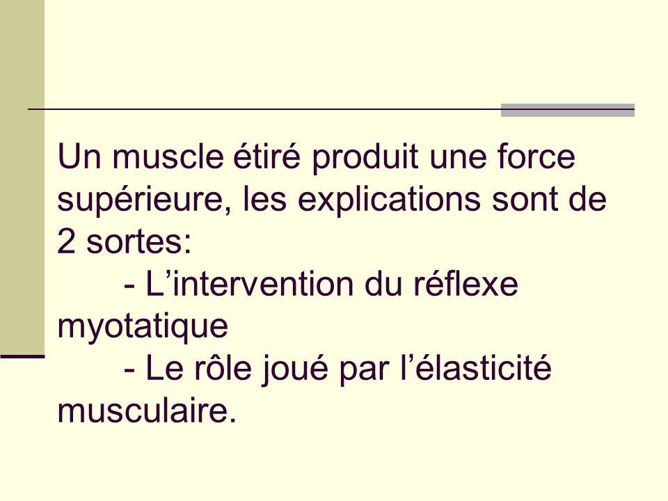Un muscle étiré produit une force supérieure, les explications sont de 2 sortes: - L'intervention du réflexe myotatique - Le rôle joué par l'élasticité musculaire.