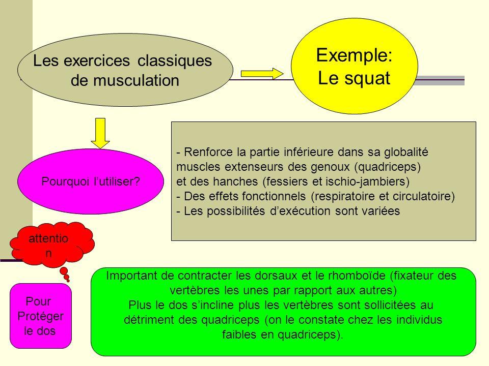 Exemple: Le squat Les exercices classiques de musculation