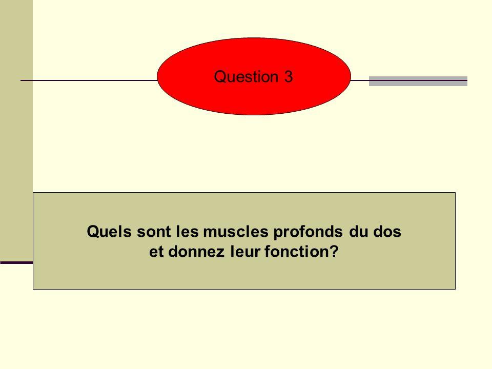 Quels sont les muscles profonds du dos et donnez leur fonction