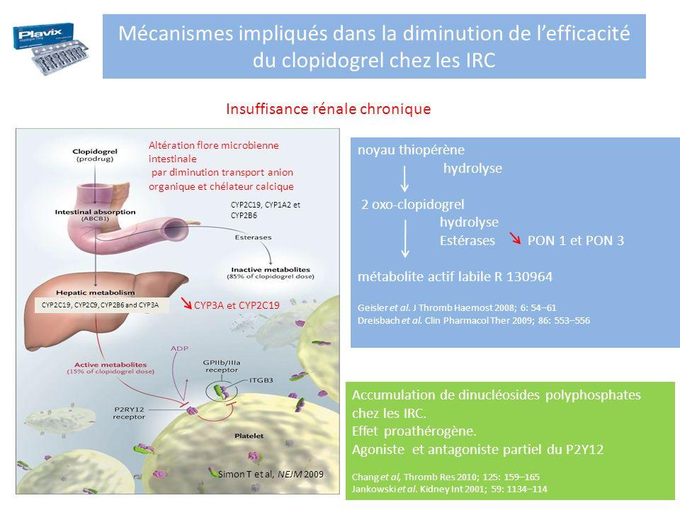 Mécanismes impliqués dans la diminution de l'efficacité du clopidogrel chez les IRC