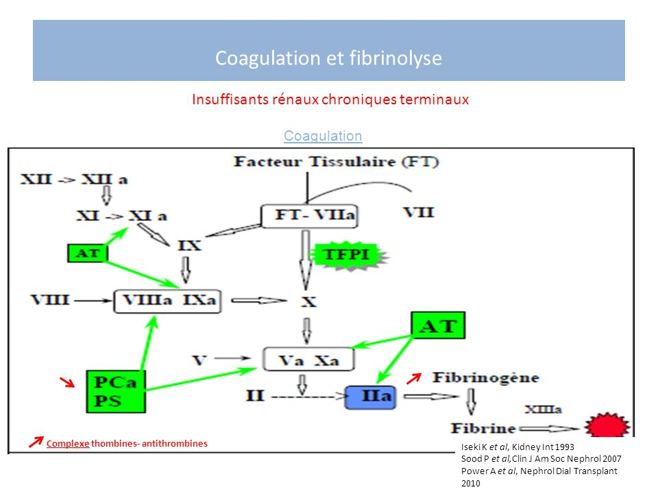 Coagulation et fibrinolyse