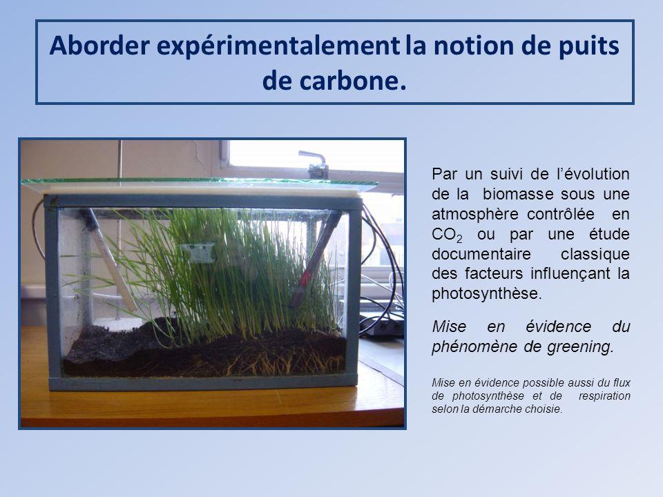 Aborder expérimentalement la notion de puits de carbone.