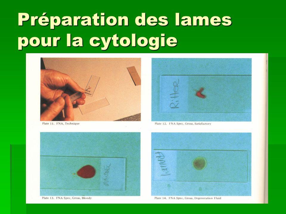 Préparation des lames pour la cytologie