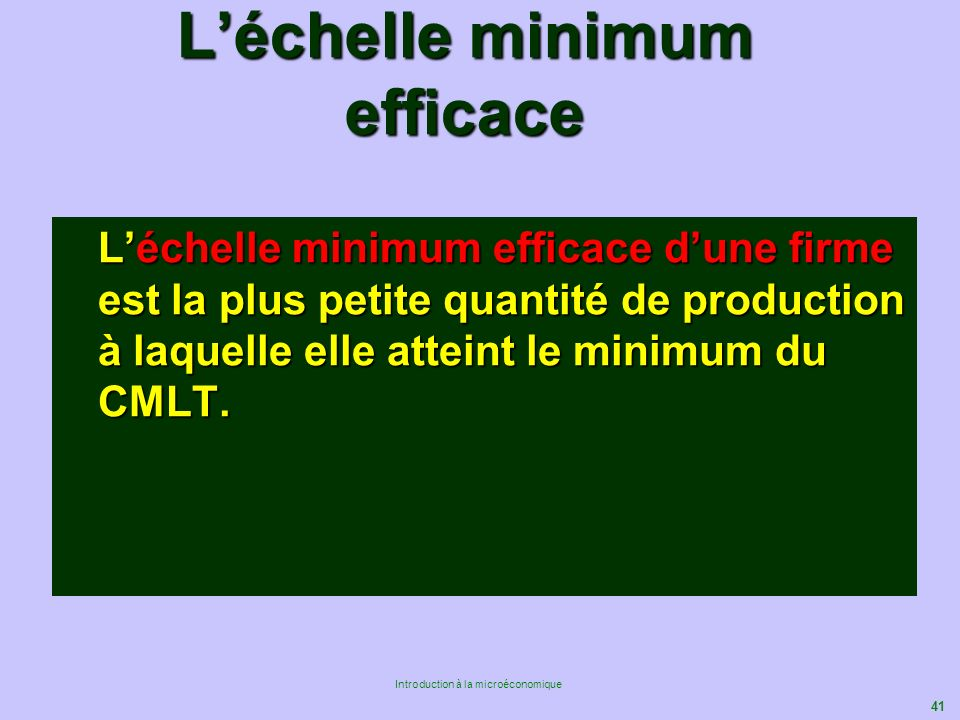 L'échelle minimum efficace