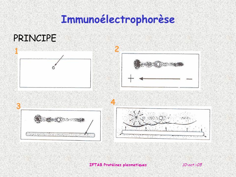 Immunoélectrophorèse IFTAB Protéines plasmatiques