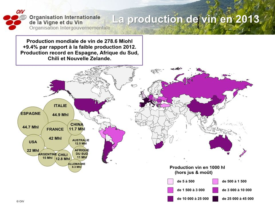La production de vin en 2013