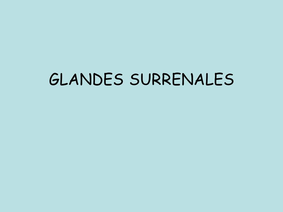 GLANDES SURRENALES